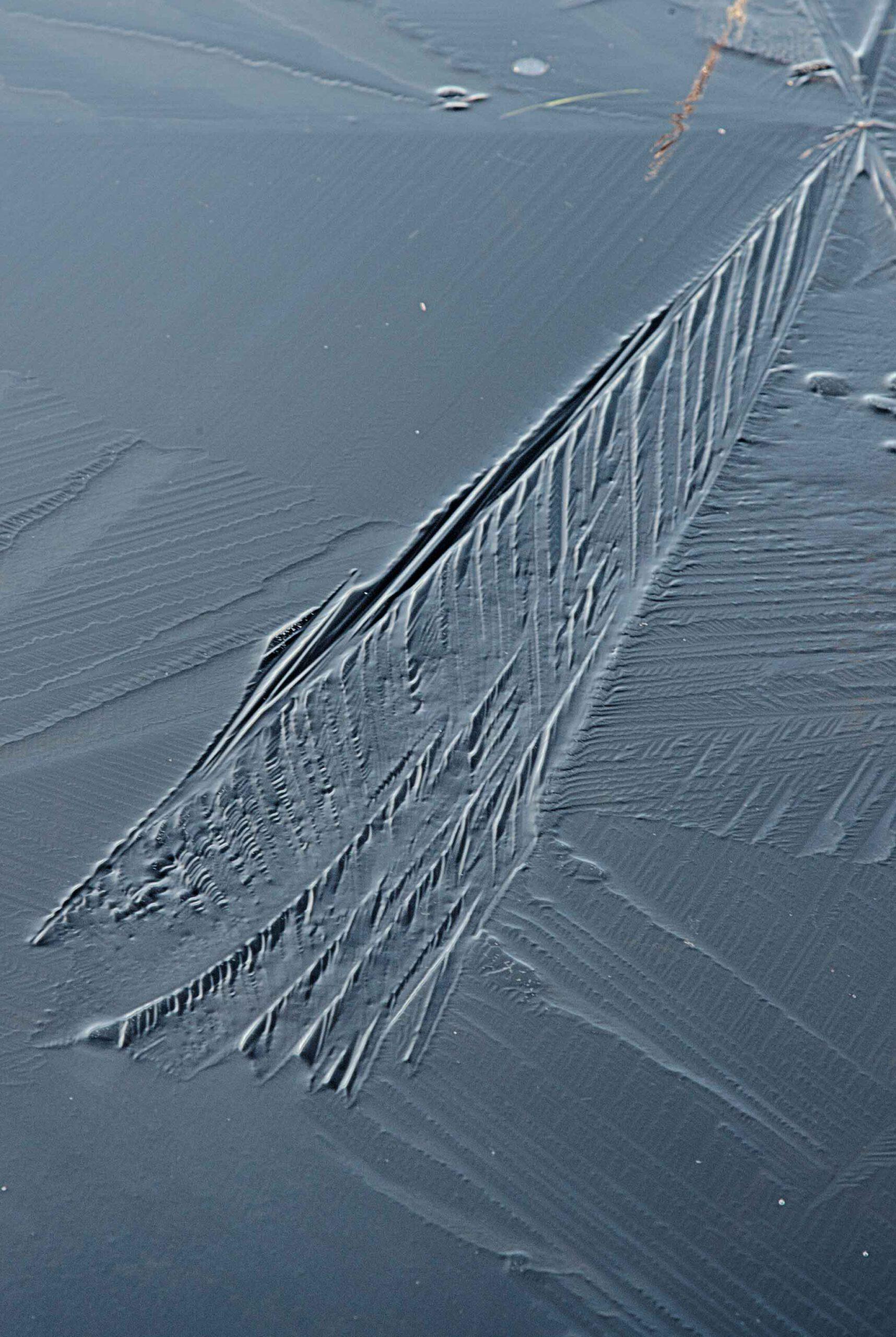 Winterlandschappen - dwingelderveld-05-202102-kopie