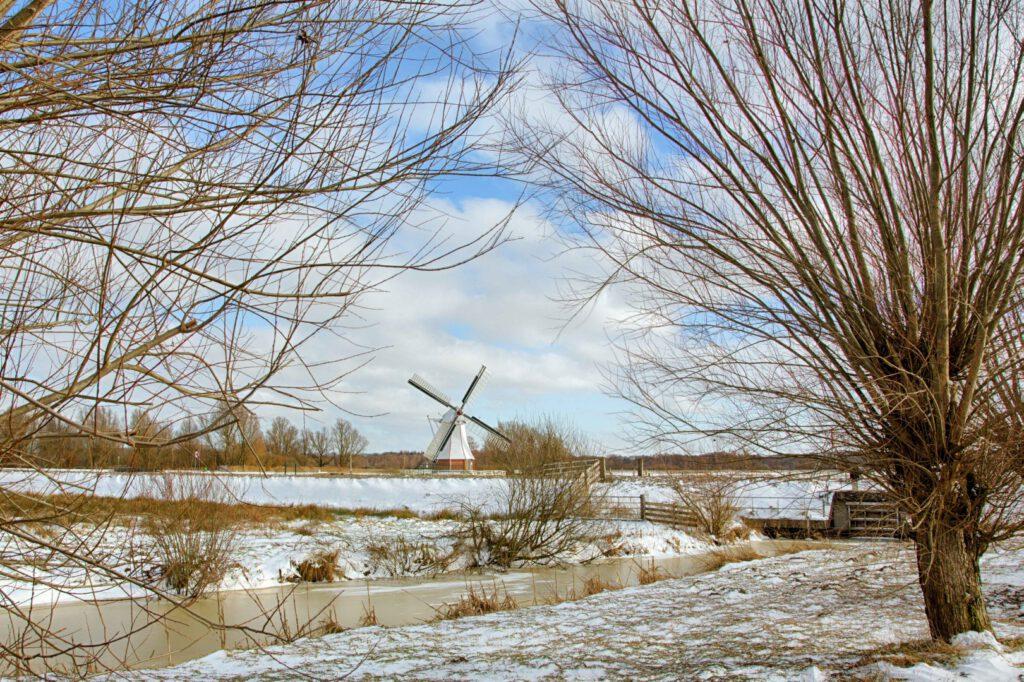 Winterlandschappen - witte-molen-01-202102-kopie-Groot